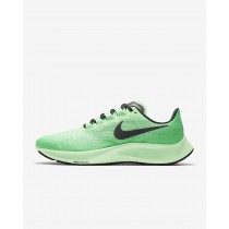 chaussures homme nike pegasus
